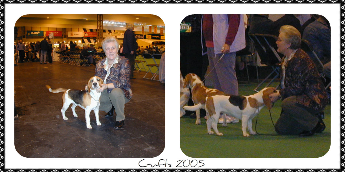 Chester & Lady Crufts 2005 Front Picture